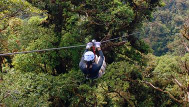 Monteverde 4